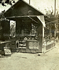 Gardner Orchard fruit stand in Santa Clara, California, circa 1918