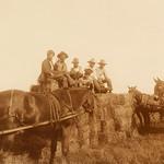 68–Harvesting hay