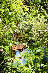 Lake Shawnee Abandoned Amusement Park - Rock, West Virginia