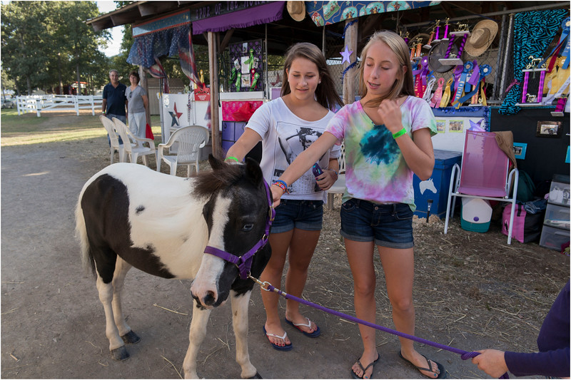 Altamont NY Altamont Fair Horse Shed Row Emily and Jenna with Pony August 2012