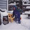 ADelmar NY Jenna Patio Snow December 2001