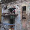 Kim Cuba Street Scene 16 March 2017