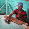 Kim Cuba Tobacco Plantation 2 March 2017