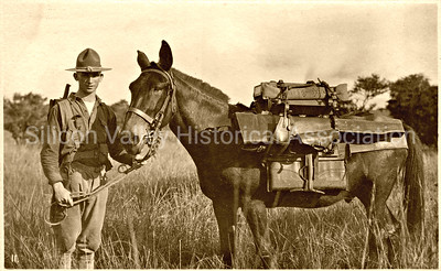 Joe Nichof with Machine Gun Co. 31st Infantry with his horse at the Philippines Island c. 1917
