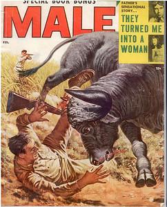 Male cover