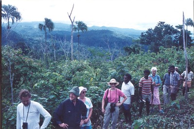 Forestry project, Malaita, Solomon Islands, late 1980s. In the line: Deputy Secretary Tim Francis, Barnabus Sirutes, and New Zealand's High Commissioner to Honiara Alison Pearce.