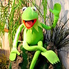 """KERMIT THE FROG"" is puppeteer Jim Henson's most famous Muppet creation, first introduced in 1955. Jim Henson was born in Leland, Mississippi, and lived in a home near Deer Creek. Leland, Mississippi is a small town about 10 miles from Greenville, MS. <br /> <br />  <a href=""http://en.wikipedia.org/wiki/Kermit_the_Frog"">http://en.wikipedia.org/wiki/Kermit_the_Frog</a><br /> <br /> River Road Queen Welcome Center <br /> Greenville, MS"
