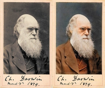 Charles Darwin, 1874 (Photo credit: Sanna Dullaway)