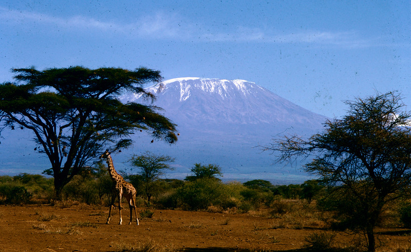 Afrika16 (7)