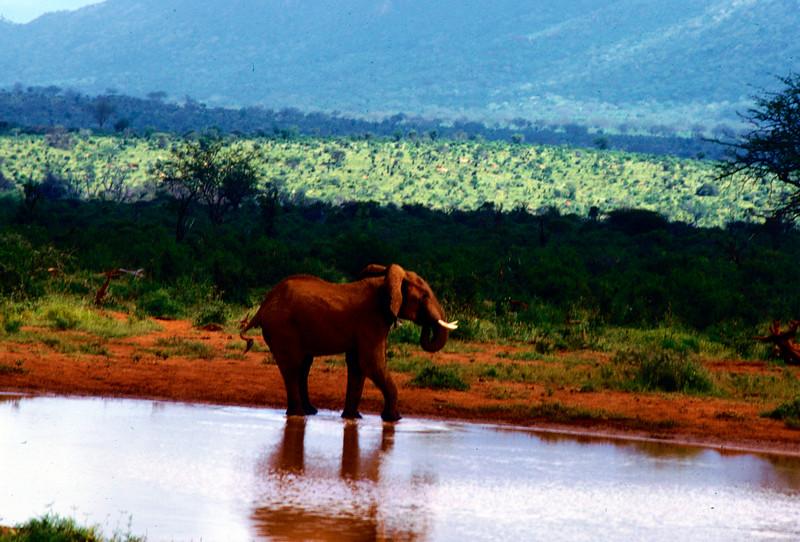 Afrika16 (14)