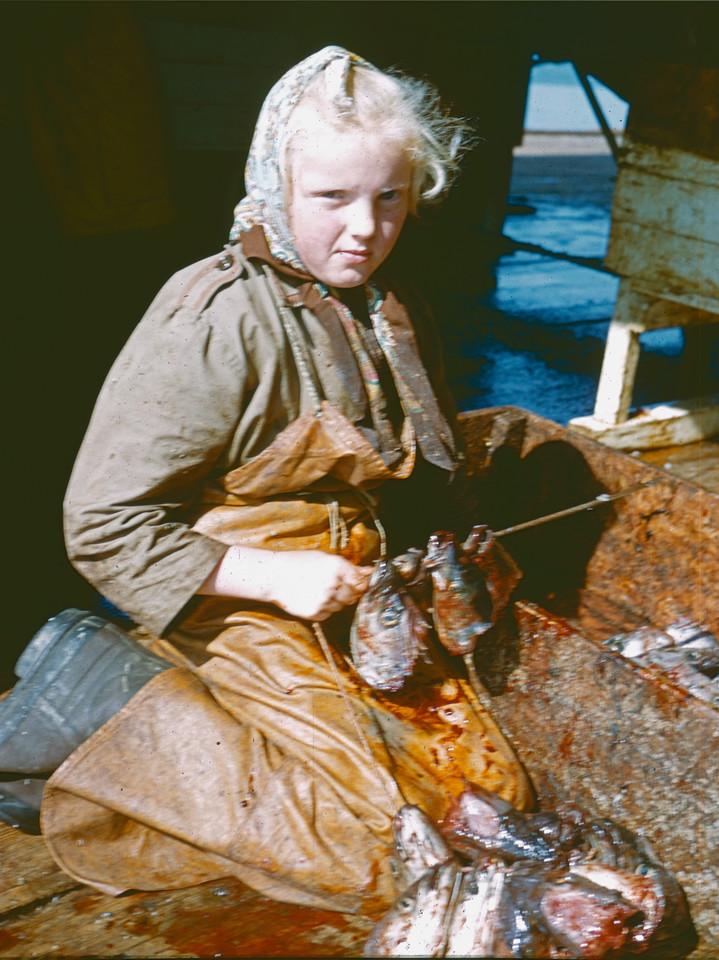 Jente med torskehoder 1959