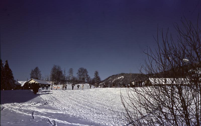 NM på ski, 1961