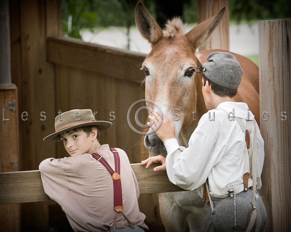 Boys and Mule 8285