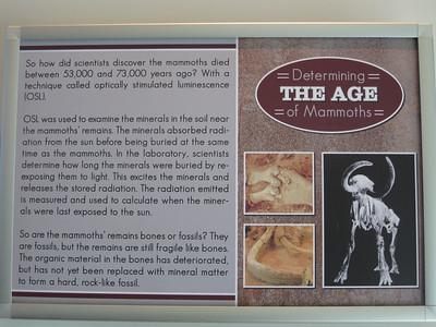 20100116 Waco Mammoth Site