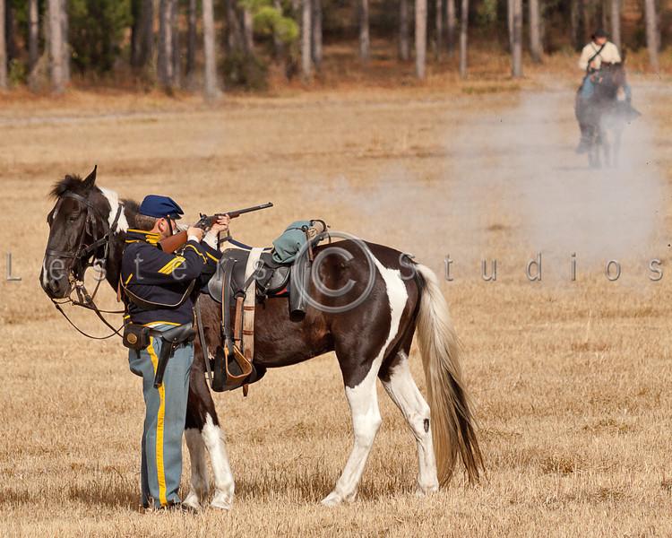Equine body armor.