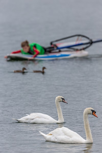 Brogborough Lake-4