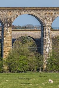 Aquaduct-143