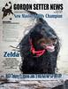 Zelda GSCA Cover