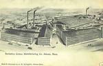 Adams Berkshire Cotton