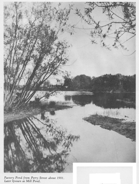 Agawam Factory Pond 1901