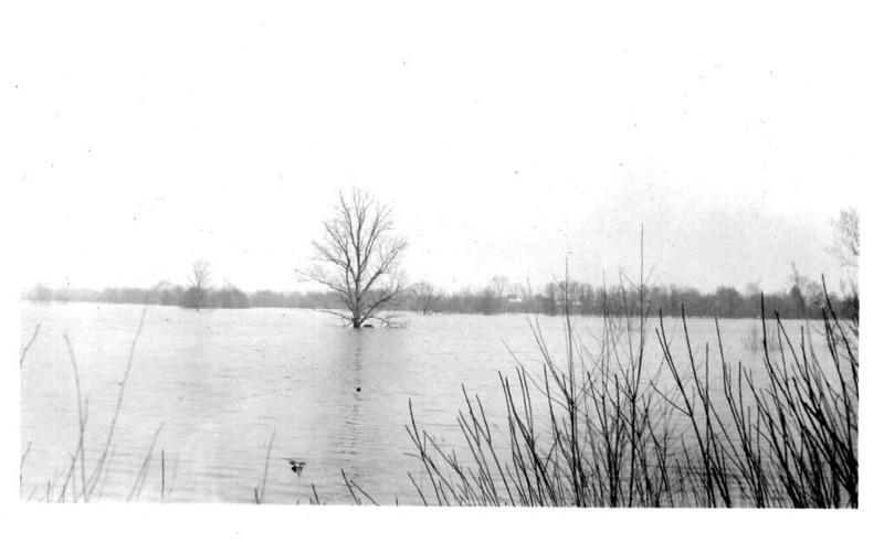 Agawam Meadows Sept 38 Flood