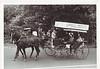 Agawam 1955 Parade Horse Cart 2