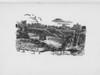 LaFrancis Sketch 50