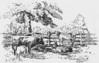 Lafrancis Sketch 13