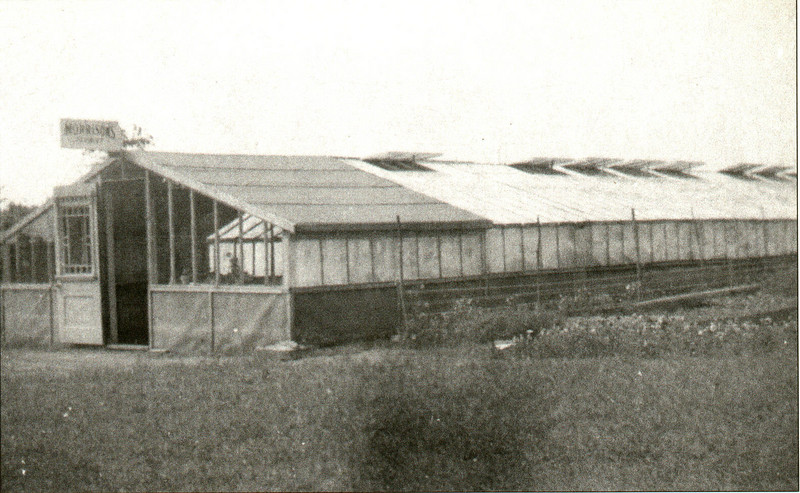 Agawam Morrisons Greenhouse