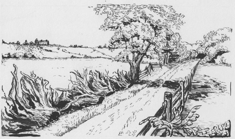LaFrancis Sketch 11
