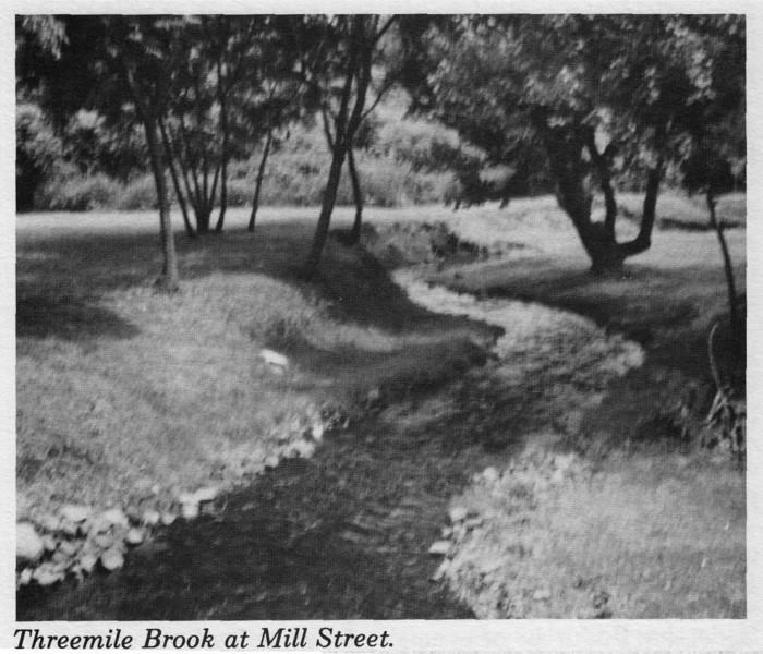 Agawam Three Mile Brook