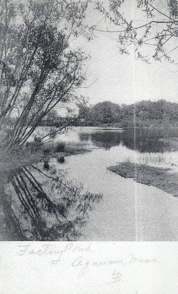 Agawam Factory Pond