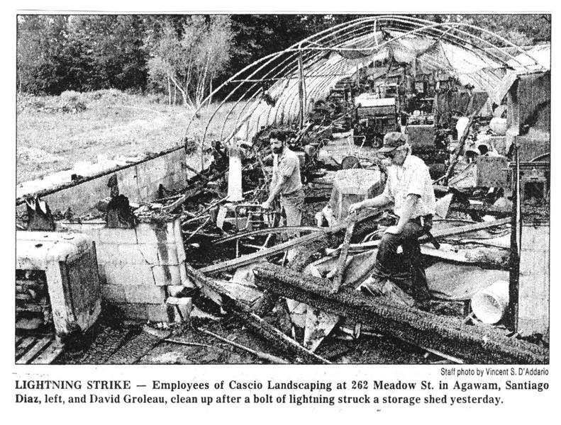 Agawam Lightning Strike Cascio's Landscaping