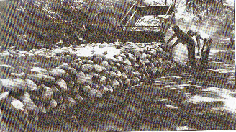 Feeding Hills Agawam River Parkway 1936