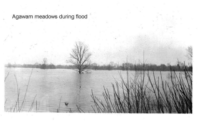 Agawam Flood Meadows