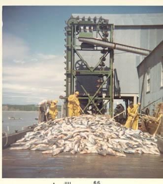 1966_CRPA_Naknek_cannery