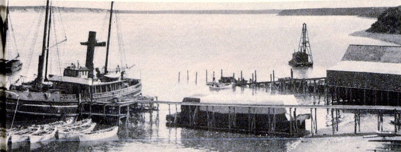 Arctic Packing Co,Built 1890,1893 Purchased By Packers Association,Later CRPA,Naknek River,