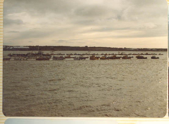 CRPA_Bear_Naknek_cannery_Bristol_Bay