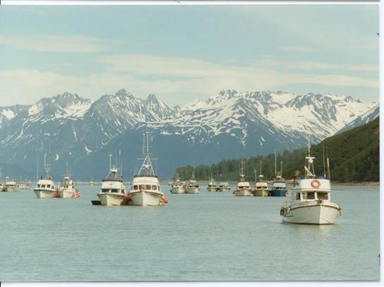 Cook_Inlet_Snug_Harbor_Kenai
