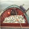 Cathy_B_Naknek_CRPA_King_Fish_Ben_Bay_Bob_Bay