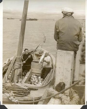 1949_Libby_tallyscow_sailboats_Bristol_bay_Naknek