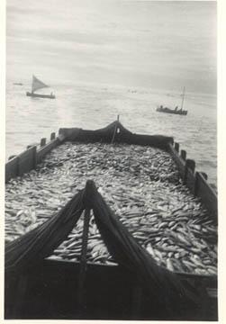 1939_CRPA_Tallyscow_Loaded_Naknek_AK_sailboats