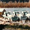 Sonja_Lynn_Ben_Bay_Elizabeth_M_Wad_Mustola_Nordic_Sun_Dale_Leino_1979_Midland_Boat_Wks