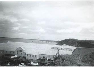 1946_CRPA_monkey_boats_cannery_Naknek_sailboats