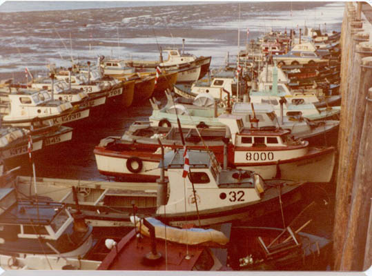 CRPA_Naknek_cannery_1966,BB-32,Jalmar Johnson,Bristol Bay,8000_33_37_41_36_43_BB,