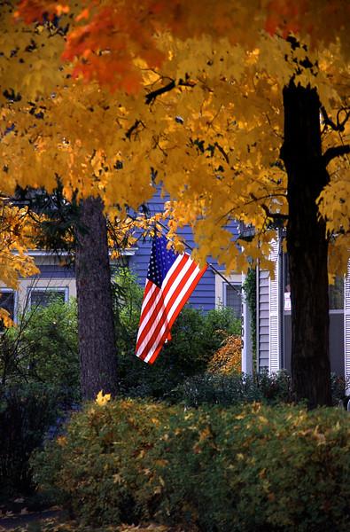 Fall Flag
