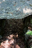 <center>Stone Roof   <br><br>Salem, NH   <br><br>The sharpening stone also served as the roof of this shelter.    </center>