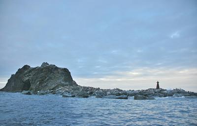 Cape Wild, Elephant Island