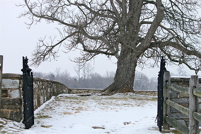 January 29, 2013. Snowy afternoon. Antietam Battlefield. Mumma Cemetery. Sharpsburg, MD.
