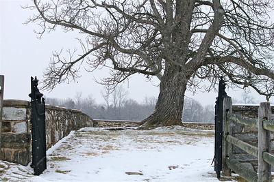 January 29, 2013. Snowy afternoon. Antietam Battlefield. Mumma Cemetery. Sharpsburg, MD.